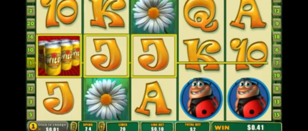 Happy Bugs Slot Machine Dafabet Casino