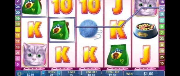 Cute and Fluffy Slot Machine Dafabet Casino