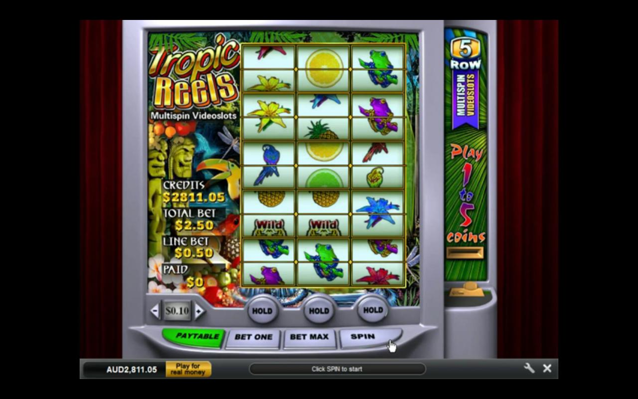 Play the Tropic Reels Online Slots at Casino.com UK