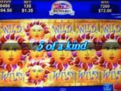 Konami Solstice Celebration Slot Machine at MoneyGaming Casino