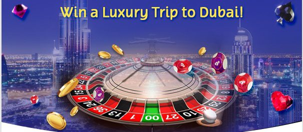 Roulette Race At PlayOJO Casino